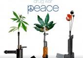 Cannabis en Belgique : il devient urgent de libéraliser le secteur !